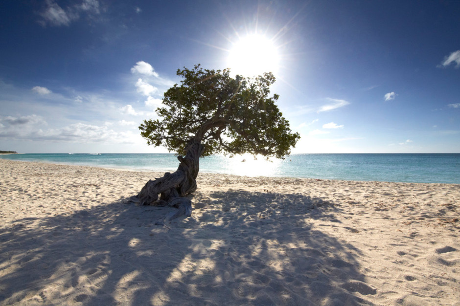 Photo courtesy of the Aruba Tourism Authority